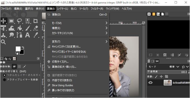 【GIMP使い方】画像の縮小